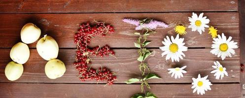 palabra verano plantas de verano foto