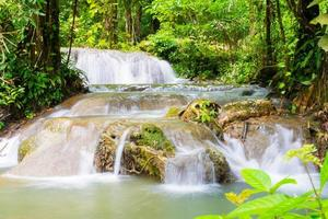 hermosa cascada en el bosque foto