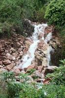 Mountain stream photo