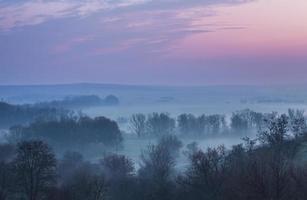niebla de primavera foto