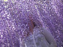 Girl in Wisteria flowers