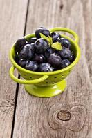 Fresh blueberries photo