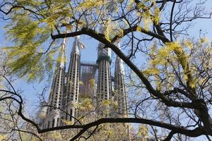 Sagrada Familia church through early spring leaves