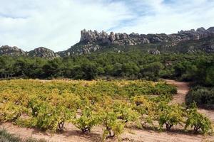 Multi-peaked mountain, Montserrat photo
