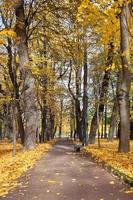 michael garden. San Petersburgo. Rusia foto