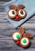 Halloween owl cookies for party