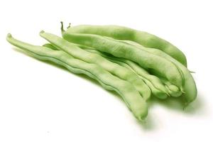 common bean