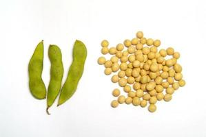 Raw bean pods and soybeans