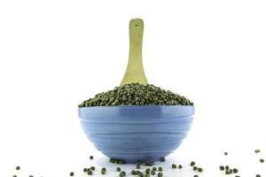 mung bean in bowl photo