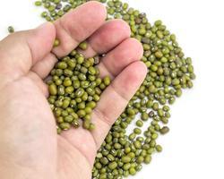 green bean or mung beans