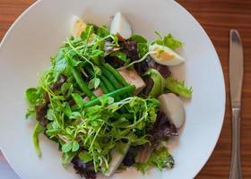 Salad Nicoise photo