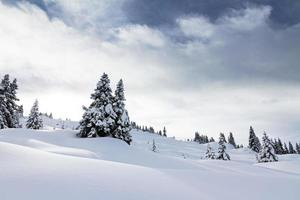 Powder landscape