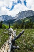 paysage de montagnes rocheuses