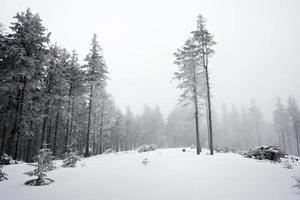 paisaje de invierno de montaña