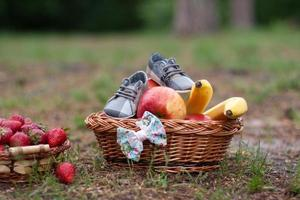 Large basket with fruits and shoes on green grass.