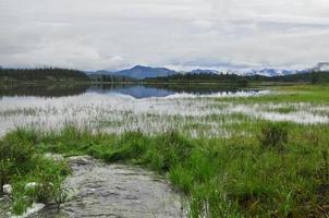 paisaje con un arroyo. foto