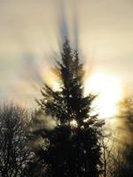 luz de invierno foto