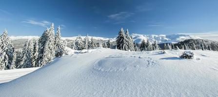 Winter alpine scenery photo