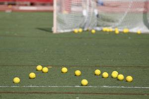 Field Balls