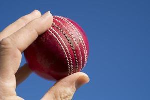 palla da cricket