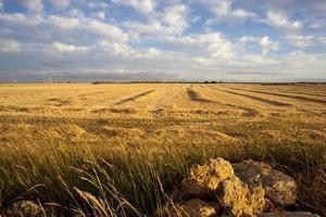 paisaje, españa foto
