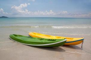 Pair of twin kayaks near a wild beach.