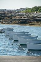 Line of row boats in water photo