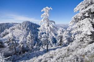 Winter landscape in the hills photo
