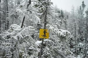 Snow shoe sign in winter