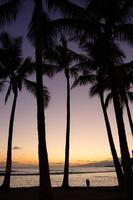 Waikiki Beach, Honolulu, Oahu, Hawaii