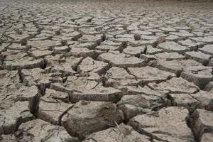 Cracked & dry lake bed during drought