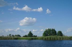 río, tierra con árboles y cielo nublado foto