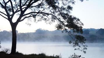 lago con niebla foto