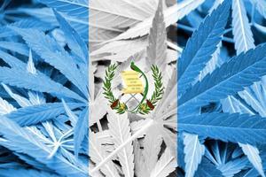 Guatemala Flag on cannabis background. Drug policy. Legalization of marijuana