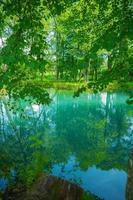 lake in forest photo
