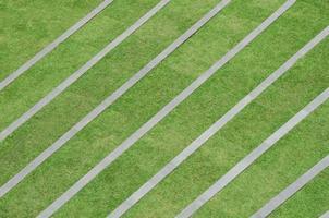 Grass pattern photo