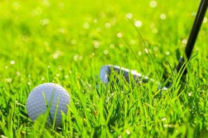 golf club and ball in the field photo