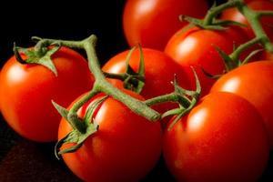 tomates en rama foto
