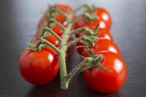 tomates cherry rojos foto
