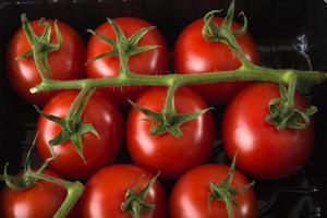 Vista aérea de tomates rojos frescos en bandeja de plástico negro supermaket foto