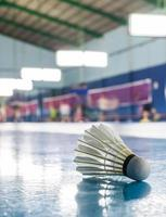 The shuttlecock on the ground in the Badminton court photo