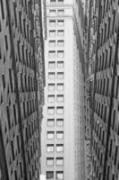 Monochromatic view of the skyscrapers