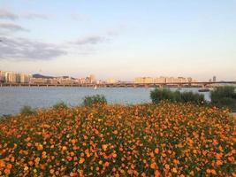 Parque Yeouido Hankang foto