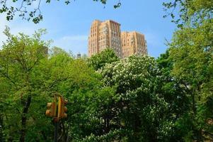 Central Park met grote wolkenkrabbers van New York City over bomen