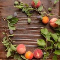 branch with plums peaches and apricots on a wooden background