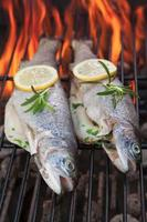 Grilled trouts
