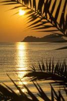 puesta de sol dorada