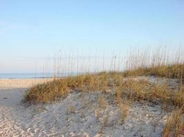 Playa de Ponte Vedra, Florida (Jacksonville) foto