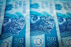 Polish money, fifty Polish zloty