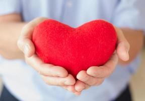 Heart in hand of senior man photo